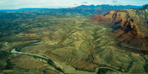 Aerial view of the green river