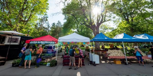 Boulder Farmers Market 2017