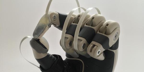 A model hand with fingerprint sensors installed