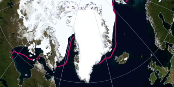 satellite image showing arctic ice cover