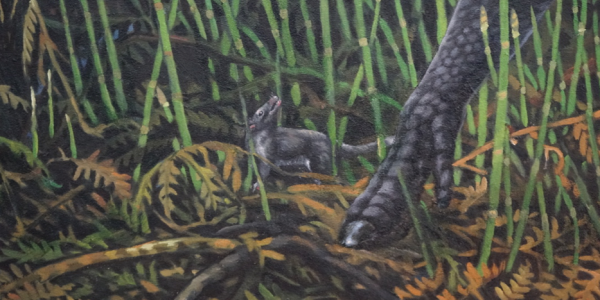 An artist's imagining of a small mammal from the Late Cretaceous