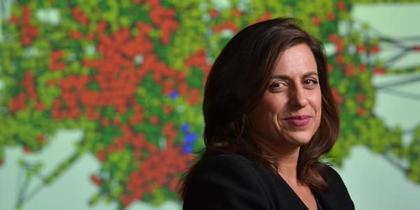 CMCI Professor Leysia Palen