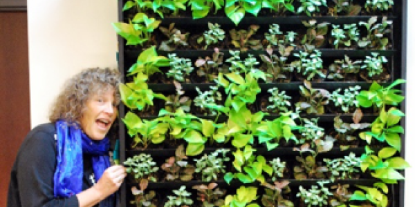 "Conference Service's ""Living Wall"""