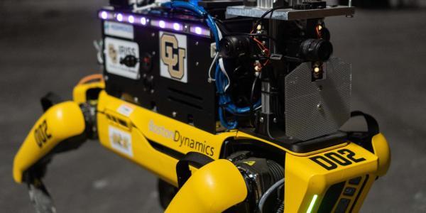 Electronics light up on a dog-like robot