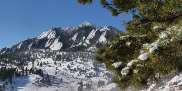 Snowy view from NCAR