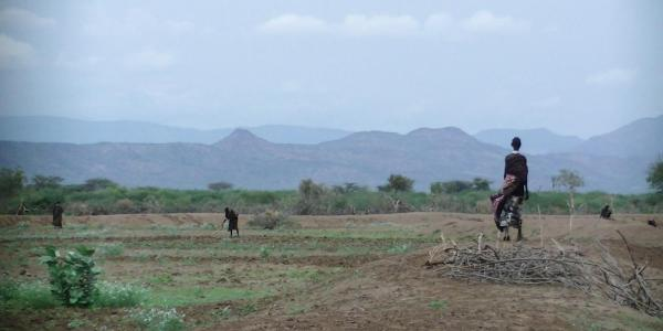 Turkana women prepare the fields to make them ready before the floods come (Loes van der Pluijm/Wikimedia Commons)