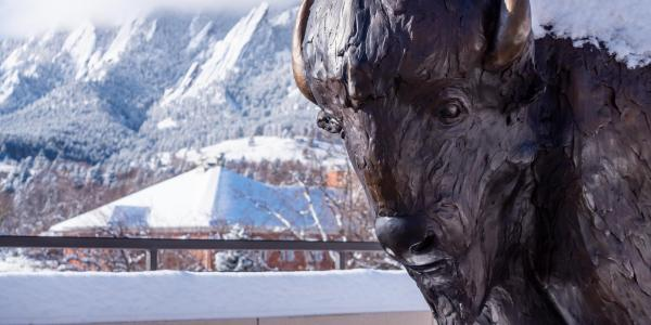 The buffalo statue at CASE in the snow, with the flatirons in the background