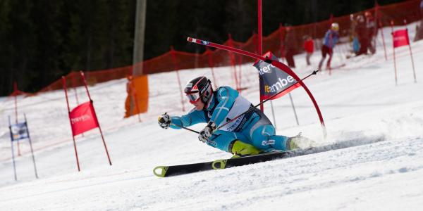 Skiier races slalom