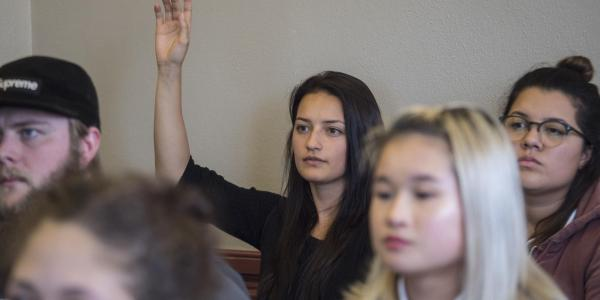 Student raises hand in classroom