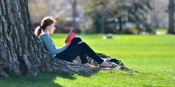 Student reading leaned against a tree on campus