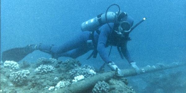 A diver inspecting an underwater cable