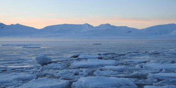 Sea ice near Svalbard