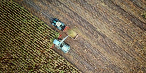 truck yielding crops
