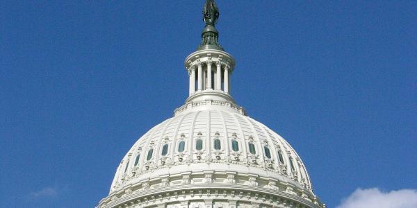 Capitol building dome in Washington, D.C.