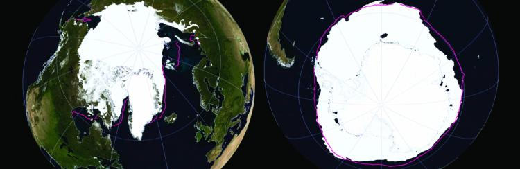 satellite image showing arctic and antarctic ice extent