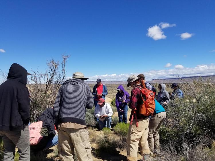 Students explore field sites