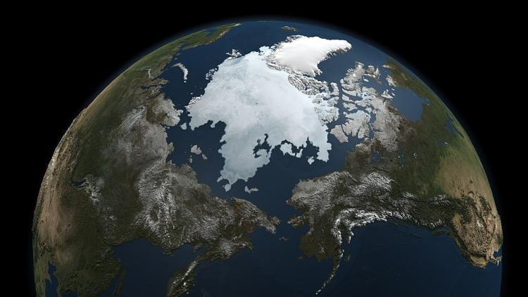 global arctic sea ice