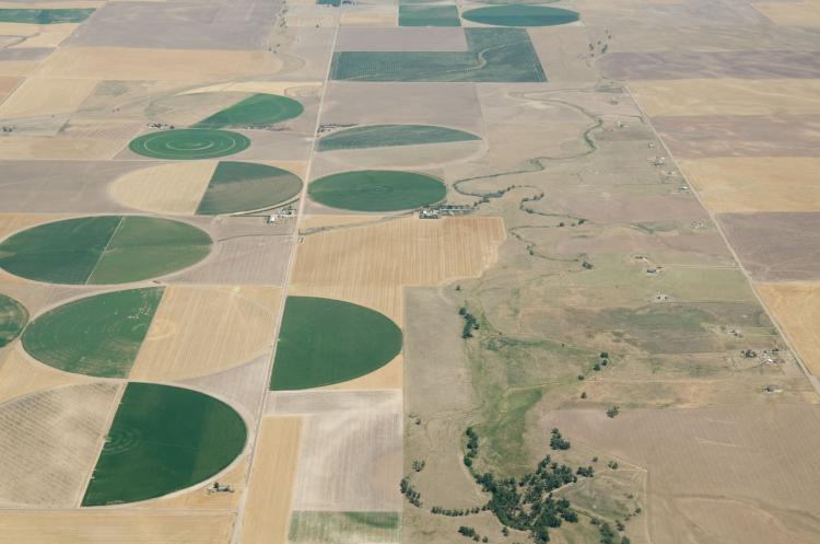 Crop circles on Colorado farmlands