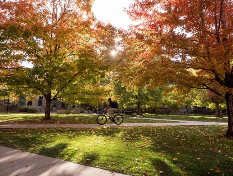 A fall scenic image of the CU Boulder campus
