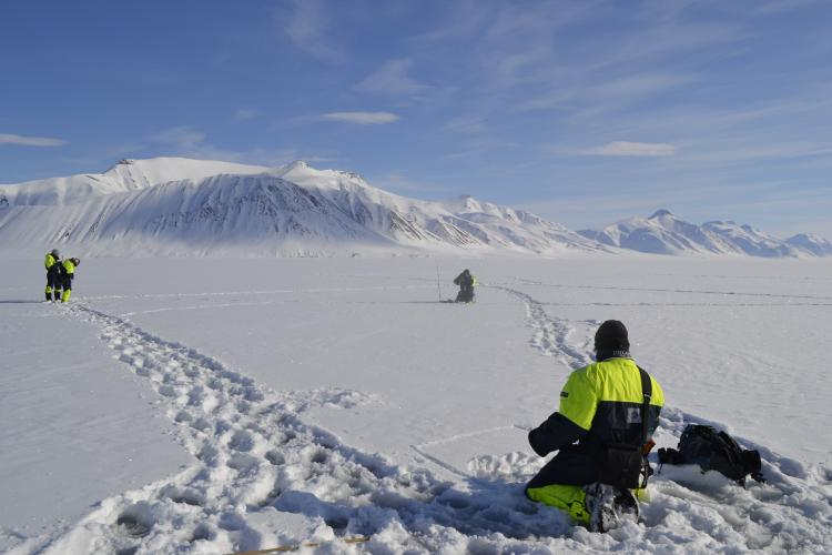 Collecting spectral reflectance measurements of surface snow with corresponding snow samples in Northern Svalbard