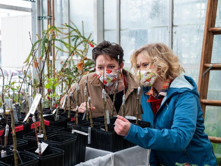 Two students examine plants
