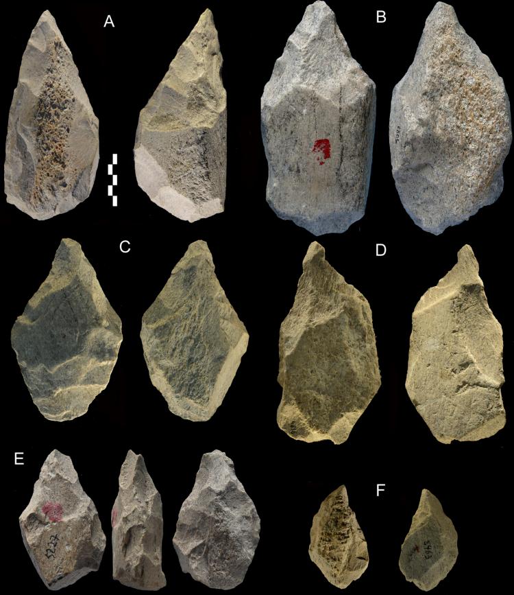 Un conjunto de herramientas de hueso puntiagudas excavadas en Castel di Guido