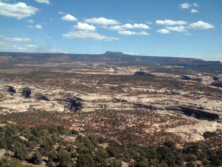 A view of Deer Canyon and Bears Ears in San Juan County, Utah.
