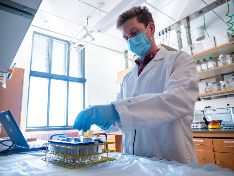 Researcher reaches from sample tubes filled with liquid