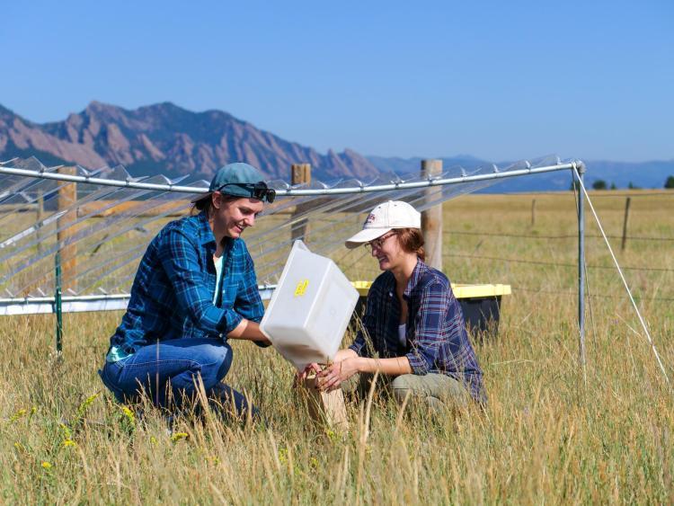 Graduate student Julie Larson and undergraduate Emily Koke in grass