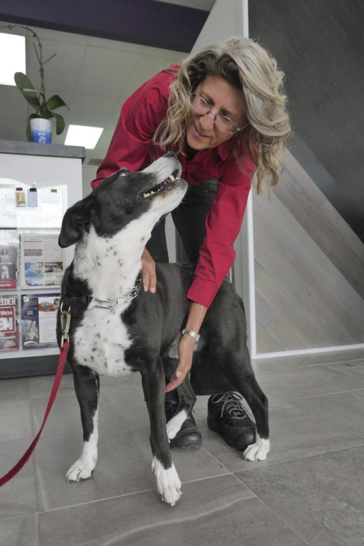 LInda Watkins with Shane the Dog