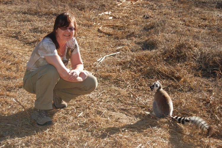 lemurs madagascar, decline