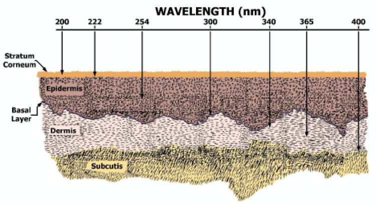 Figure of UV light penetration