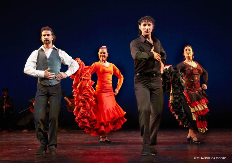 Flamenco Vivo Carlota Santana performs traditional dance on stage