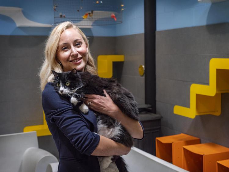 Lindsay Scott with a cat at Boulder's Humane Society