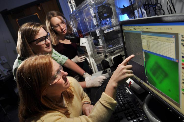 Researchers collaborate in lab