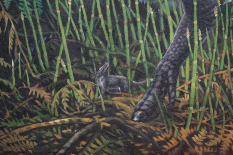 Artist's depiction of Late Cretaceous mammal