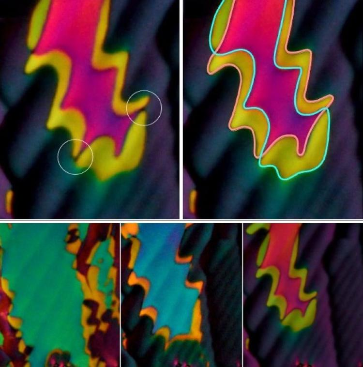 Five images of a new liquid crystal phase