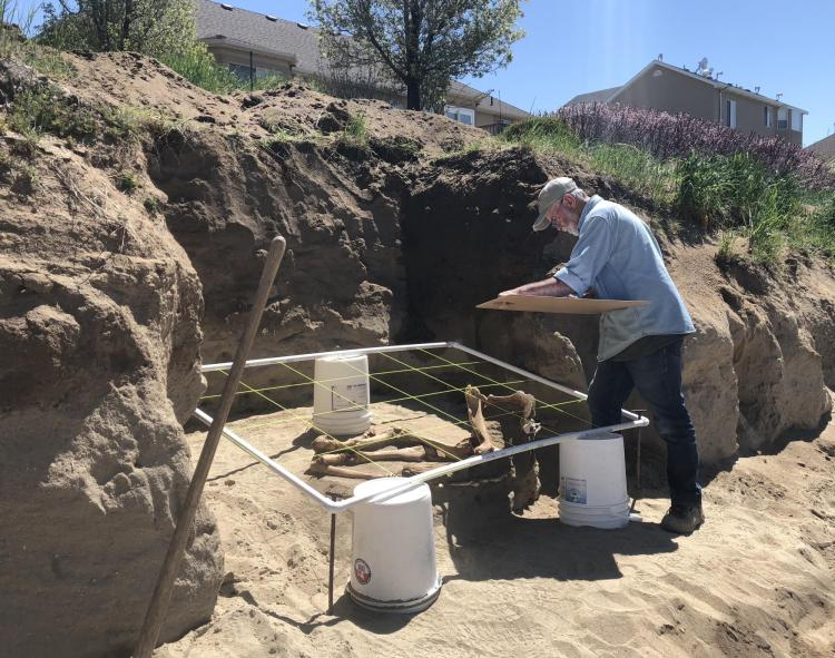 A researcher works to excavate the Lehi horse skeleton