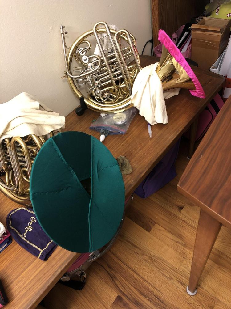 French horns with bell covers