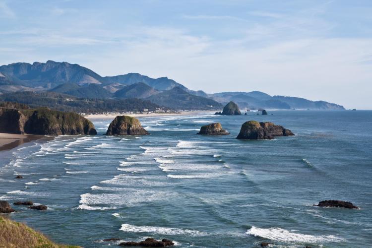 A vista of the Oregon coastline