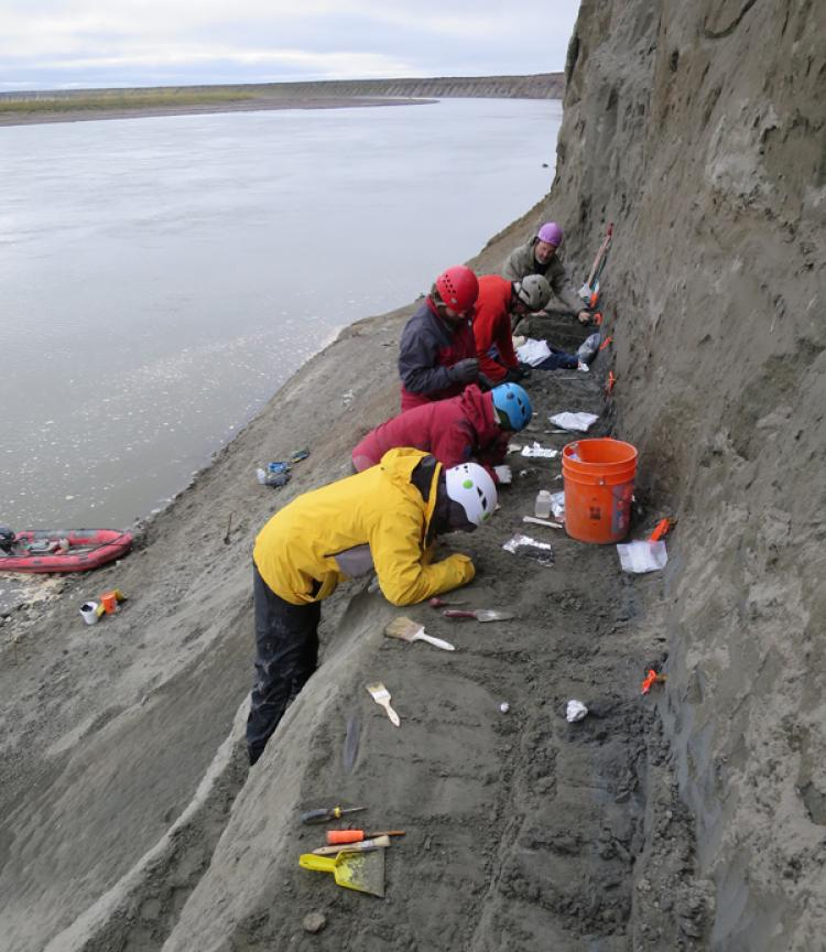 Paleontologists excavate a cliff side