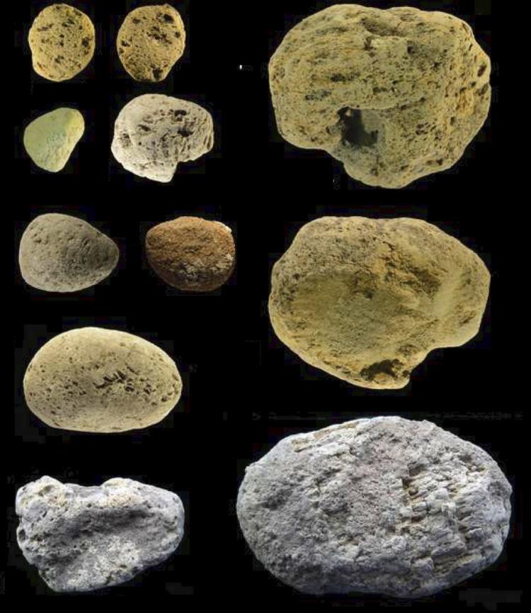 A collection of pumice stones discovered in Grotta dei Moscerini