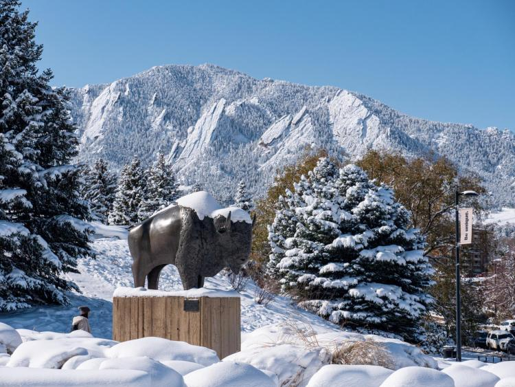 Ralphie sculpture topped with snow
