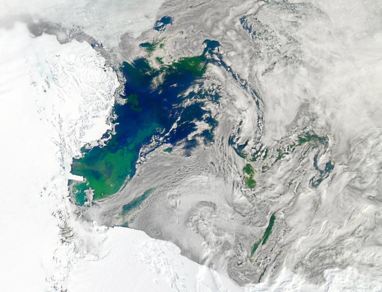 Satellite image of the Ross Sea, which extends off of Antarctica's Ross Ice Shelf