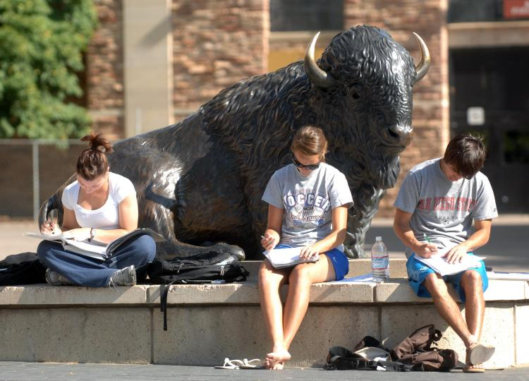 students studying, sitting near buffalo statue