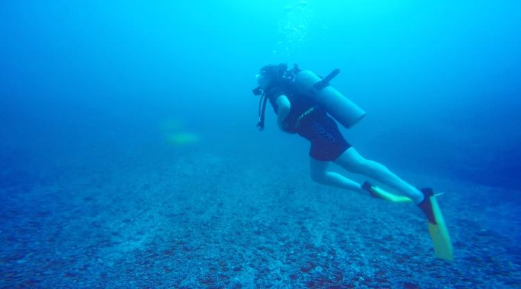 Researcher Hayley Sohn SCUBA diving