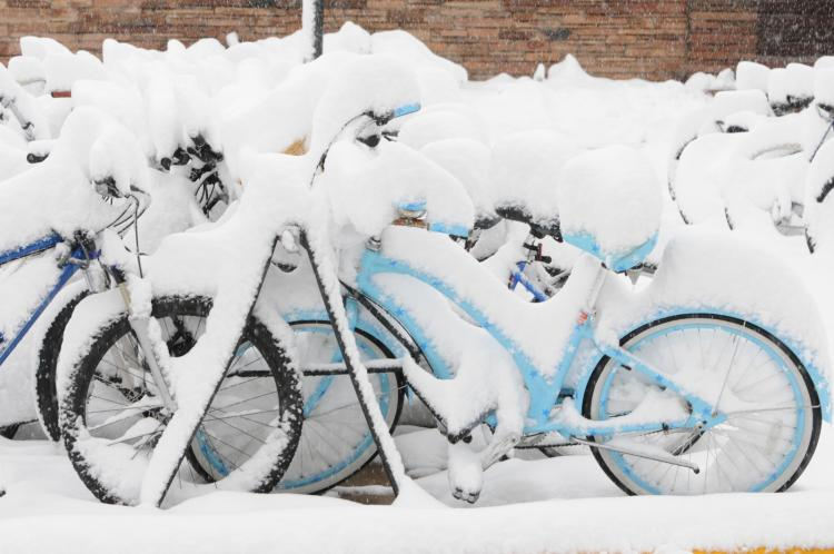 Snow-covered bikes