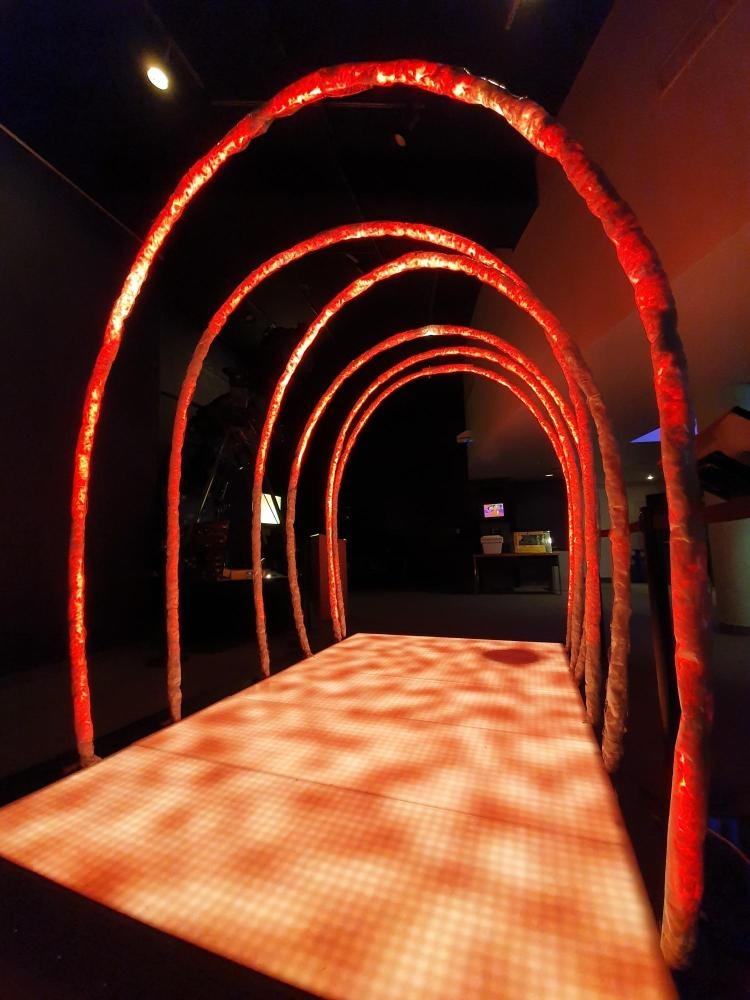 "The ""Solar Arcade"" lets visitors walk underneath the sun's coronal loops"
