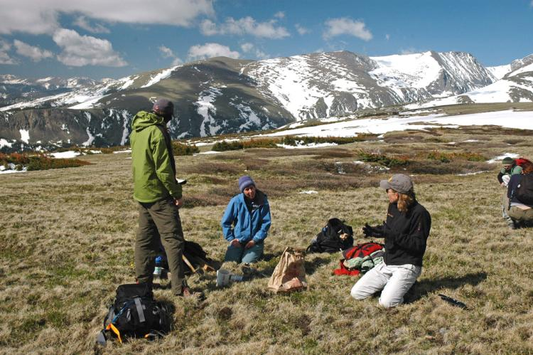 Former CU-Boulder postdoctoral researchers Amy Miller ( blue coat) and Katie Suding  (black coat) are shown here with other members of a research team conducting a study involving nitrogen deposition on the tundra of the Niwot Ridge Long-Term Ecological Research site west of Boulder. (Photo courtesy William Bowman, INSTAAR)