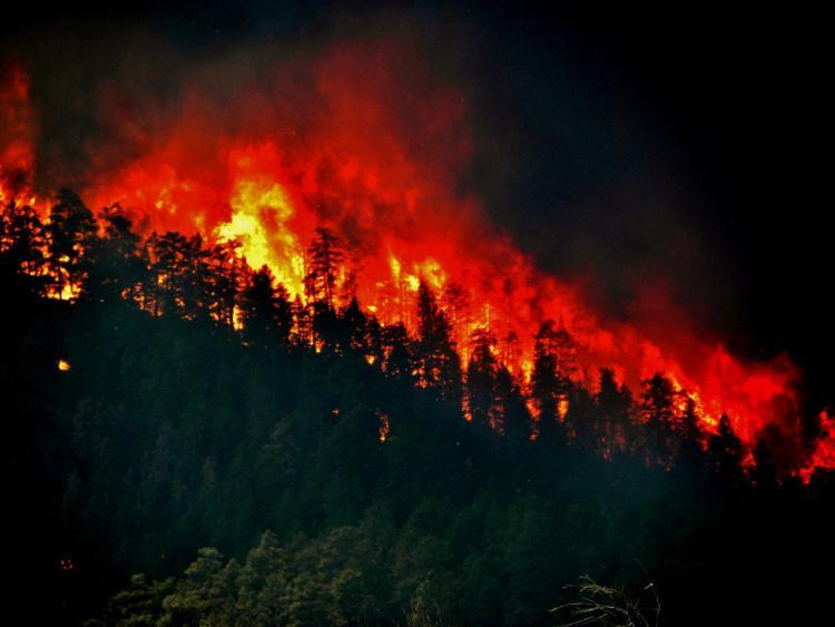 The high park fire